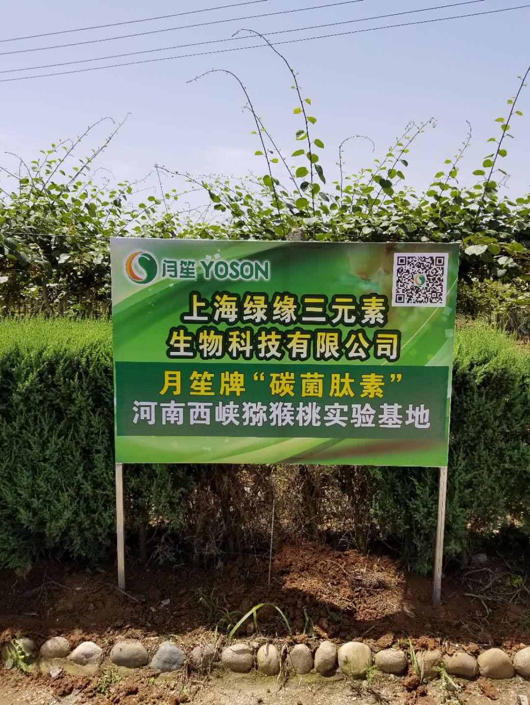 河南西峡猕猴桃碳菌肽素有机肥实验基地